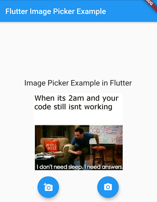 flutter image picker camera and gallery example